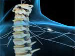CSI faculty have been awarded $1.7M for Spinal Cord Injury Research.